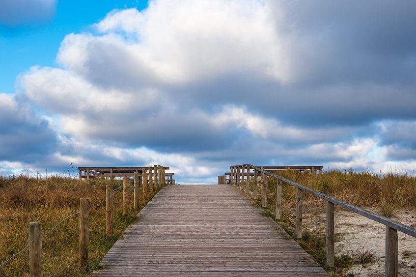 Strandaufgang an der Küste der Ostsee auf dem Fischland-Darß von Rico Ködder