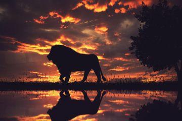 Een silhouet van een leeuw in de zonsondergang van Bert Hooijer