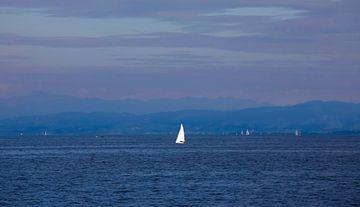 Bodensee mit Segelboot von Thomas Jäger
