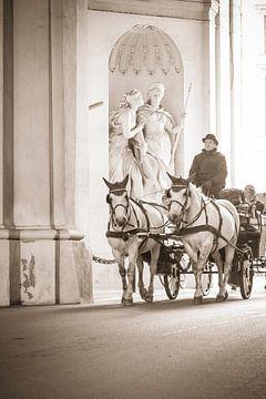 Paard en wagen van Tycho Müller