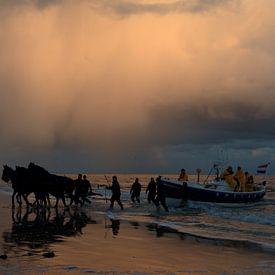 Paardenreddingsboot Ameland van Rinnie Wijnstra