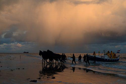 Paardenreddingsboot Ameland van