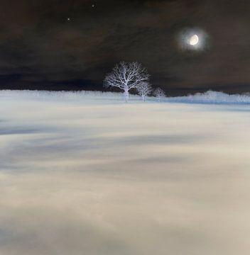 Mysteriöse Landschaft von Corinne Welp