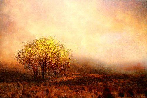 De wilgenboom van