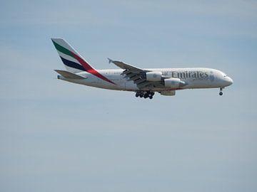 Airbus van  Emirates Dubai van