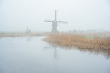 Hollands landschap met mist van Björn van den Berg