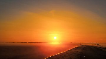 De weg naar de zon van Sparkle King