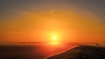 De weg naar de zon von Sparkle King