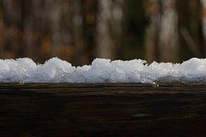 Sneeuw op hout van