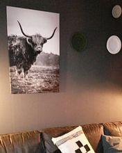 Klantfoto: Schotse Hooglander 2 van Martzen Fotografie, op canvas
