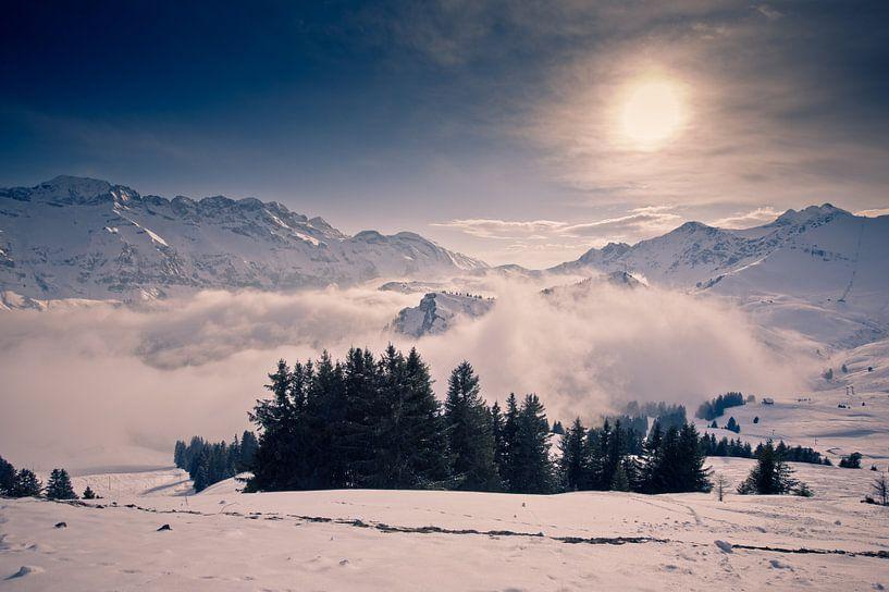 Above the clouds van Sander van Leeuwen