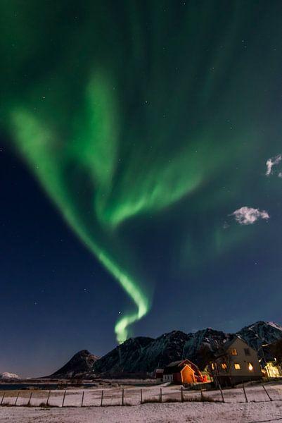 Noorderlicht over de Lofoten von Rob IJsselstein