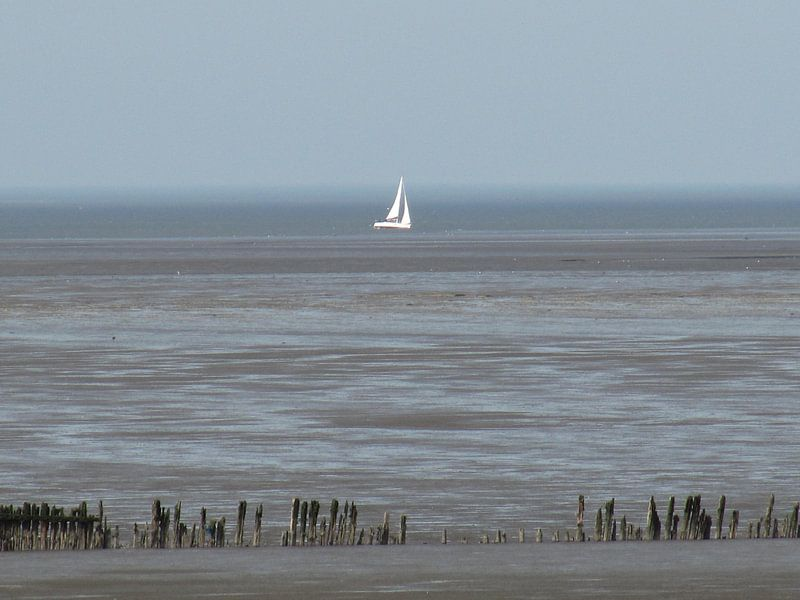 sailing van Folbert Nicolai