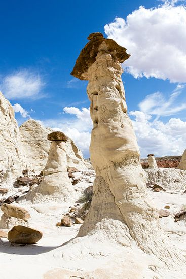 White Rock - Utah