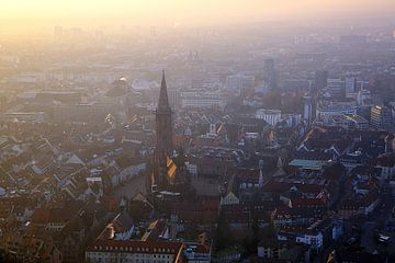 Aussicht auf Freiburg van Patrick Lohmüller
