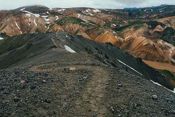 Wandelaars in Landmannalaugar, IJsland van Shanti Hesse