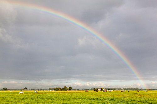 Groningen / Regenboog over de omliggende weilanden van Dorkwerd / 2013