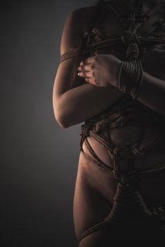 Gewoon een romantisch zijaanzicht van bondage... van Catherine Mason