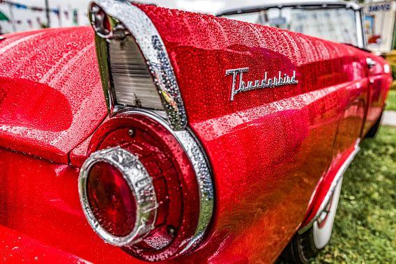 Ford Thunderbird vleugel na regen van autofotografie nederland