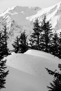 Schönes Stillleben von Abdrücken im Schnee. von Aukelien Minnema