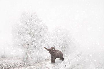 Baby mammoet in de sneeuw van Elianne van Turennout
