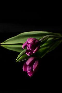 Soms kan je stil worden van een bloem van As Janson