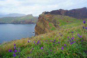 Ponta de São Lourenço, Madeira,
