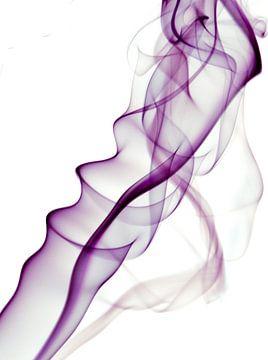 Rook van Jehee Fotografie
