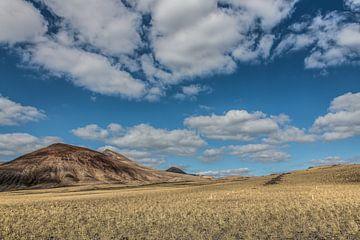 Glooiende landbouwgrond nabij Quemada op Lanzarote, Canarische Eilanden. sur Harrie Muis