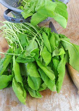 groenten0864a van Liesbeth Govers voor omdewest.com