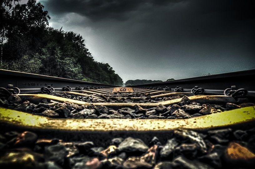On the Track van Michiel ter Elst