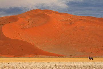 Gemsbock oder Oryx in der namibischen Wüste von Bobsphotography