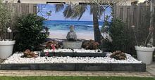 Klantfoto: Divi Divi boom op Aruba van Giovanni della Primavera, als naadloos behang