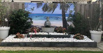 Kundenfoto: Divi Divi boom op Aruba von Giovanni della Primavera