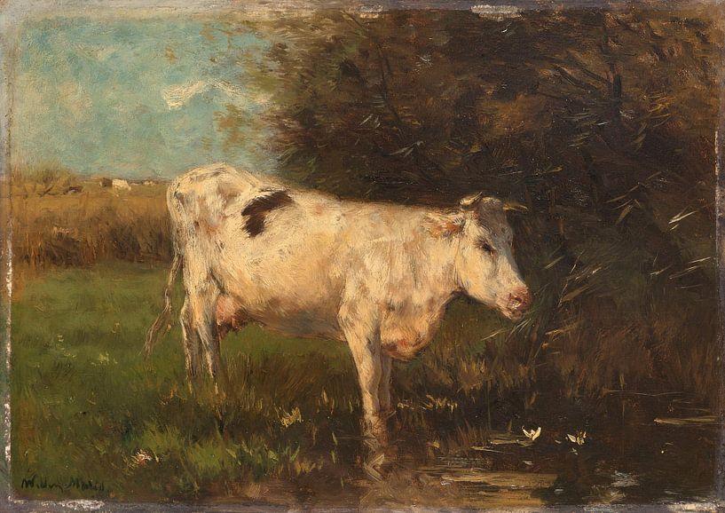 Witte koe, Willem Maris van Meesterlijcke Meesters