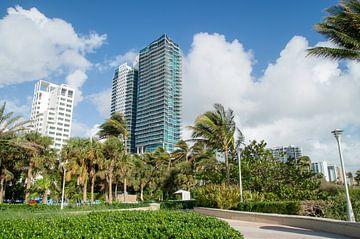 Miami Beach van Melissa Serlier