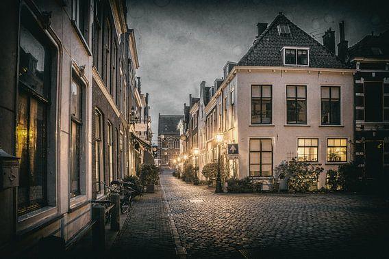 Leiden op zijn mooist! van Dirk van Egmond