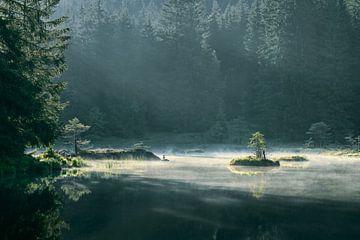 Sonnenaufgang am kleinen Arbersee von Max Schiefele