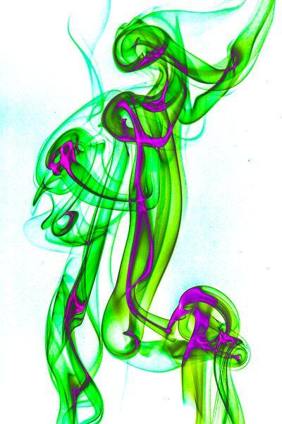 De Groene Heks van Robert Wiggers