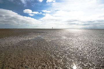 Vergezicht Waddenzee bij eb van