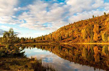 Herfstkleuren bij bergmeer in Noorwegen van Johan Zwarthoed