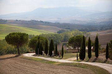 Toscaans landschap van Kees van Dun