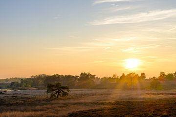 Zonsondergang aan De Teut van Johan Vanbockryck