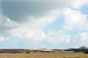 Paysage de dunes au bord de la mer en Zélande sur Louis en Astrid Drent Fotografie