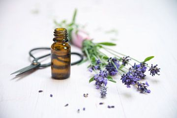 lavendelbloemen, een flesje met essentiële kruidenolie en een schaar op wit geschilderd hout, kopiee van Maren Winter