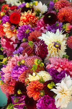 Verschiedene Dahlienblüten in einem großen Strauß auf einem Dahlienfeld von Margriet Hulsker