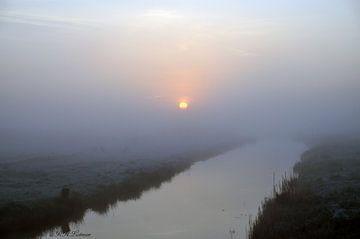 opgangde zon in de mist  van