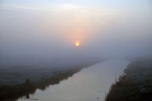 opgangde zon in de mist