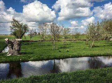 Farbfoto einer Tieflandlandschaft in der Nähe des Dorfes Grootschermer in Nordholland von Hans Post