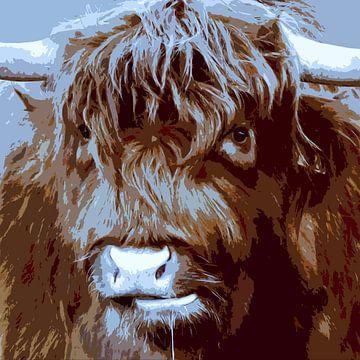 Koekop - Schotse Hooglander illustratief van geen poeha